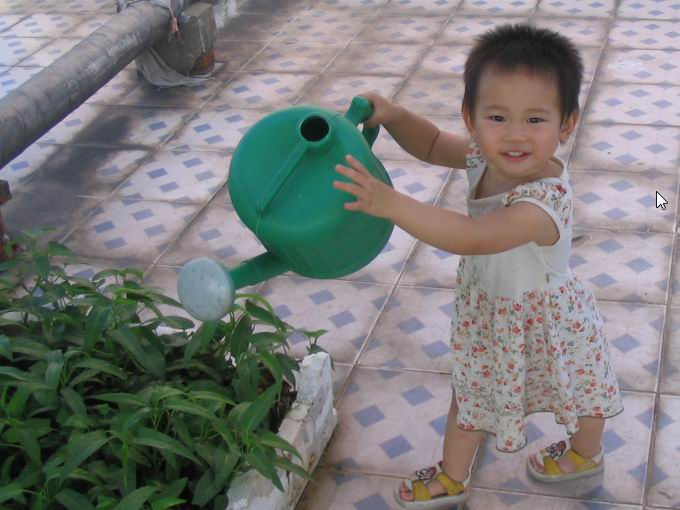 女儿虽然才一岁半,但活动能力非常强,每天来浇水时,她都要抢过我手里的晒水壶,绕着小菜土转
