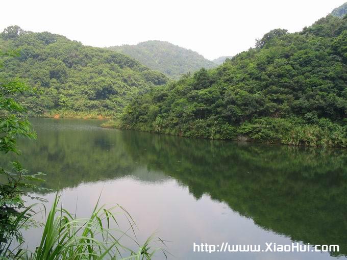 梧桐山之行图片: 山脚的小水库
