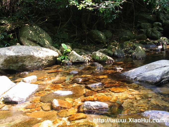 梧桐山之行图片: 清泉石上流