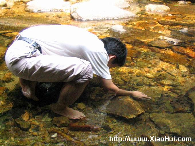 梧桐山之行图片: 清水摸鱼