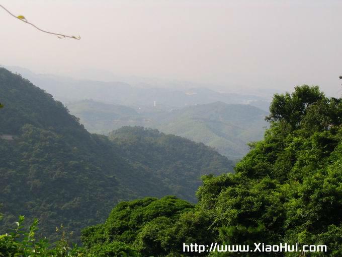 梧桐山之行图片: 在半山亭拍下的群峰