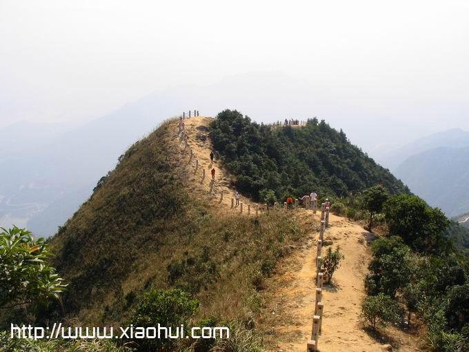 深圳梧桐山: 山脊