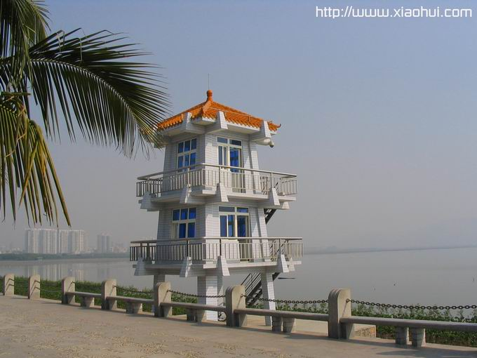 红树林: 海边巡逻塔