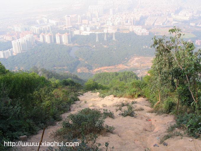 深圳南山: 半山亭的北面