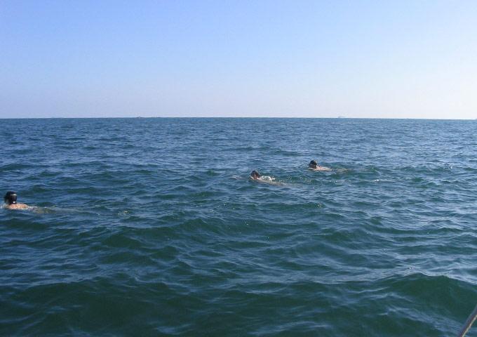与猪倌们一起裸泳横渡三门岛海域